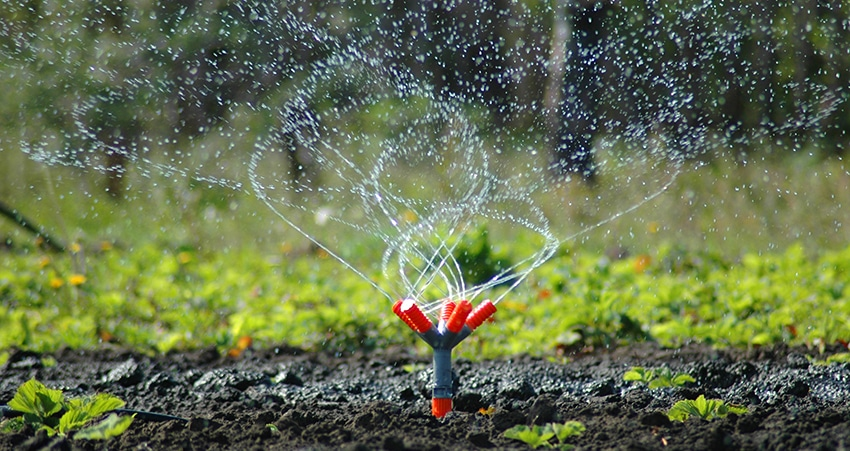 Irrigation services repair services