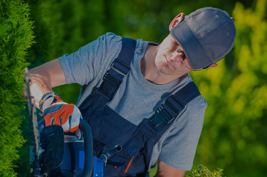 Landscaping Installation Services Spfld MO