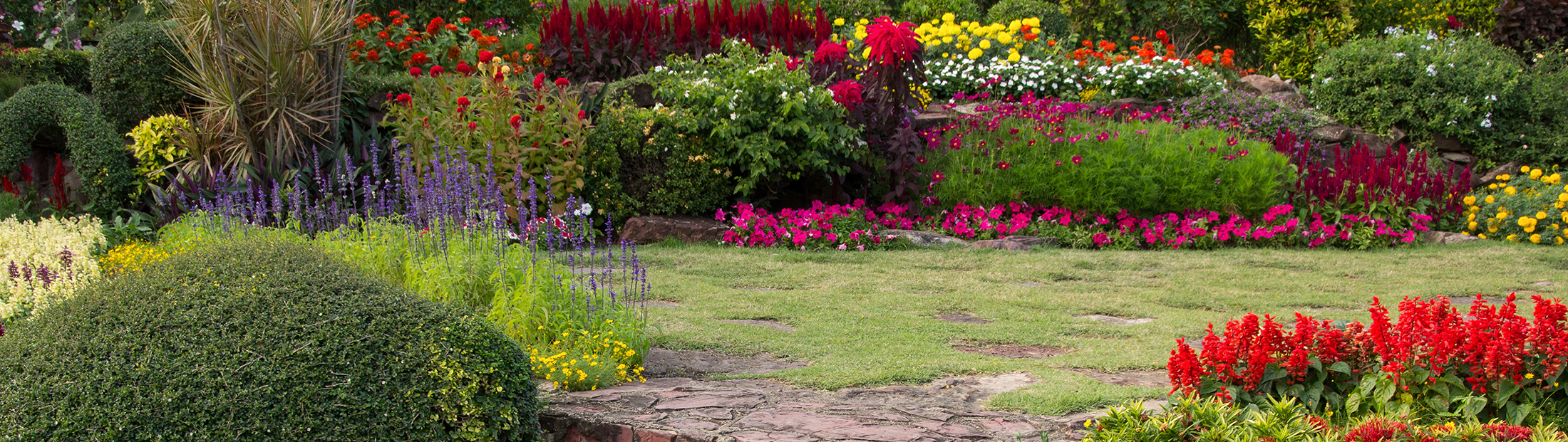Landscaping-Services-Springfield-MO-1.jpg