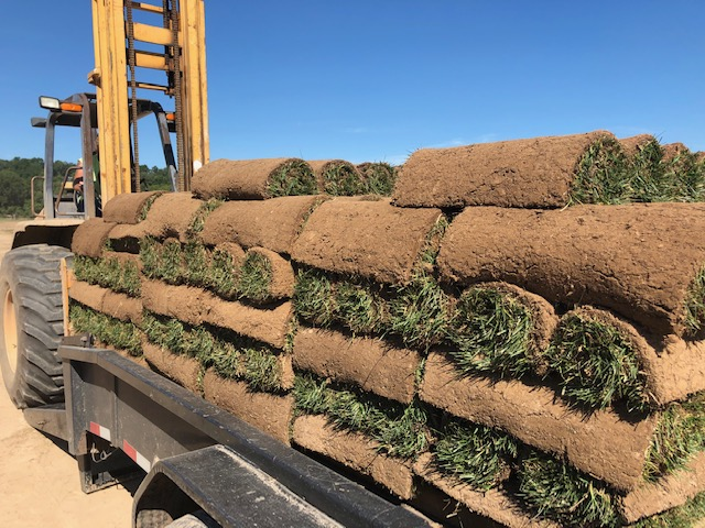 Grass sod services Earthworks Gardens